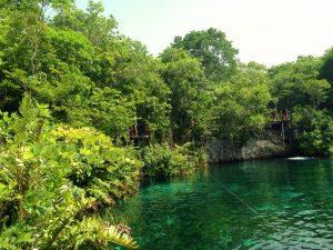 Snorkelling Cenote