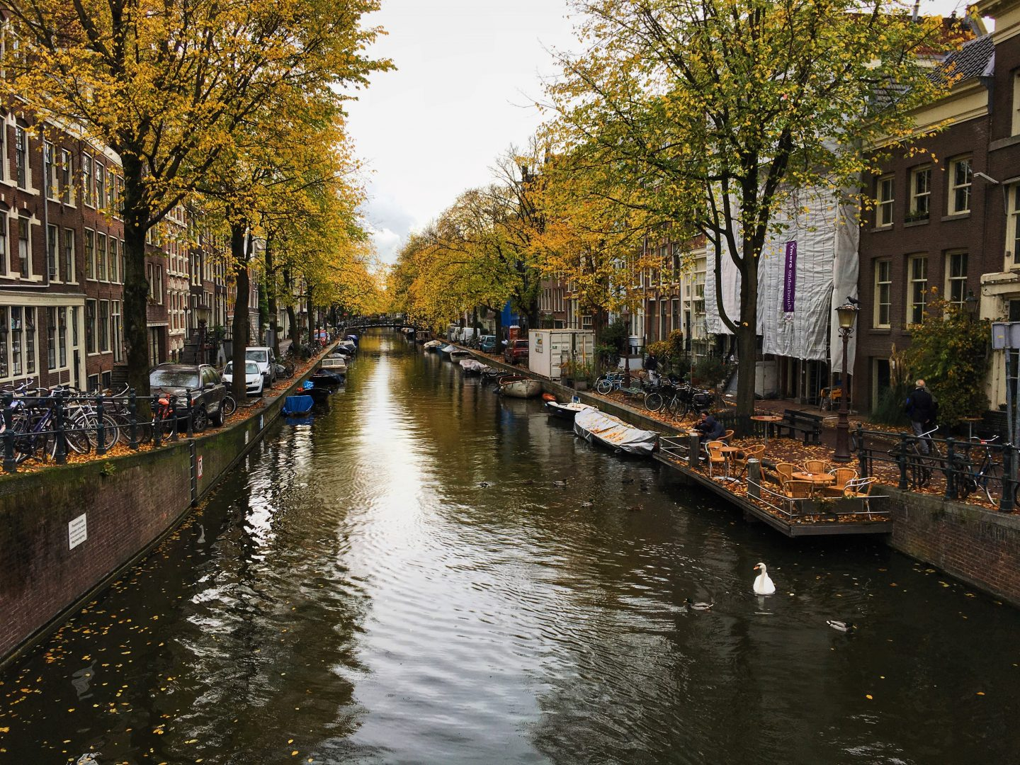 Bizarrely Beautiful: Autumnal Amsterdam