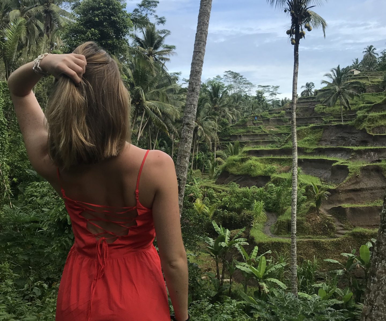 Ubud Secrets: Waterfalls, Rice Terraces, Hostels and Vegan Food